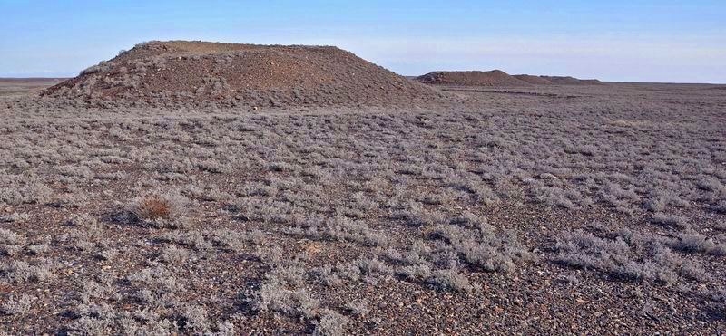 Сакско-гунские курганы 1 тыс. до н.э.