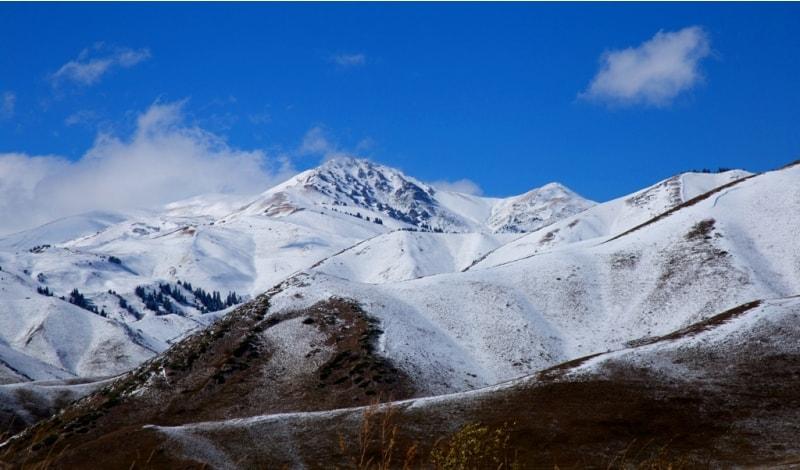 Северный склон восточной части горного хребта Кунгей Ала-Тоо.