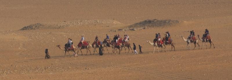 Находятся группы иностранных туристов, которые совершают небольшие прогулки на верблюдах в окрестностях Гизы.