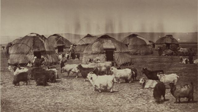 Сыр-Дарьинская область. Летовка киргизов близ Чимкенда.