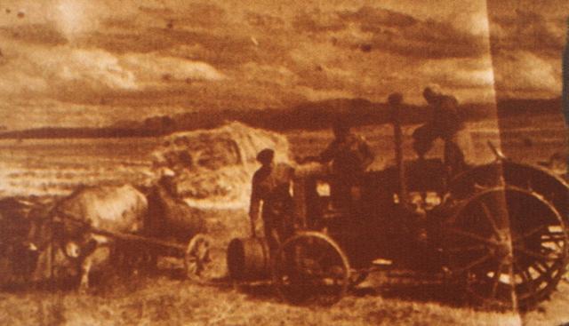 Целина в казахстанской степи.