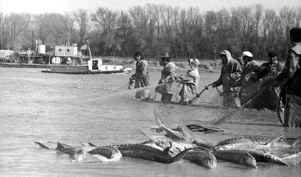 гурьев рыбалка
