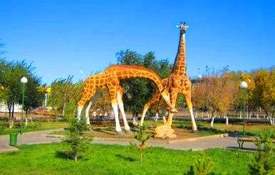 В городском парке. Жирафы.