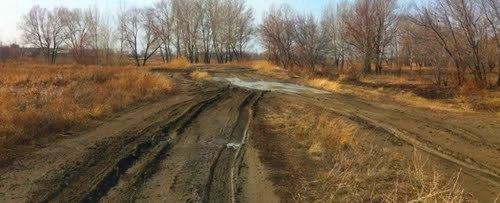 Лесная дорога.