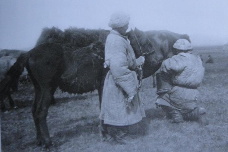 Дойка кобылы. 1907 год. С.М. Дудин.