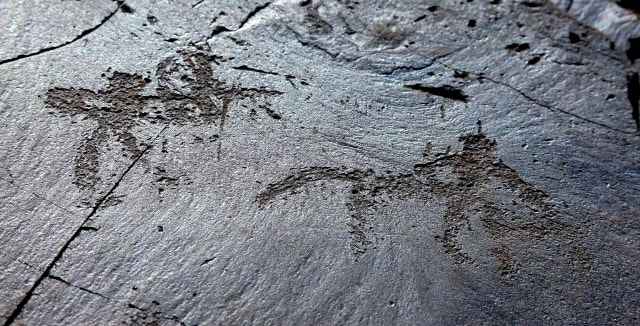 The Stage of hunting. Petroglyphs the Bayan-Zhurek.