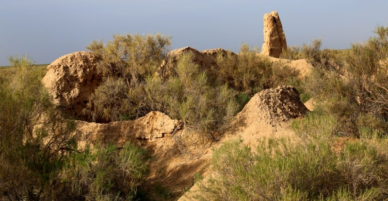 The settlement of Zhent. Kyzylorda Region.
