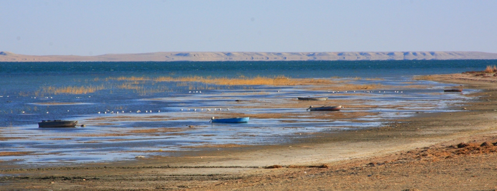 Lake Kombash. The Aral area. Kyzylorda of province.