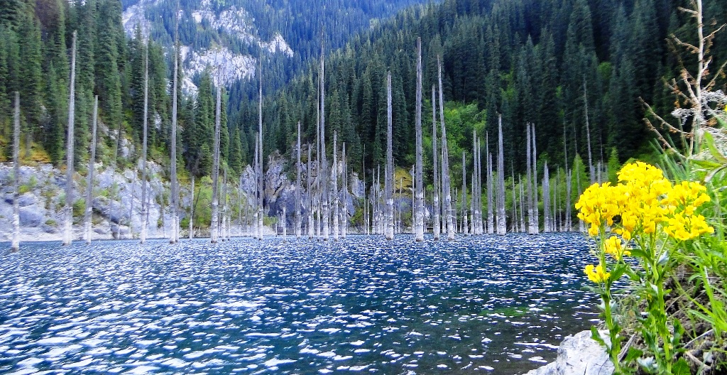 Lake Kaindy. National park Kolsai. Almaty of province.