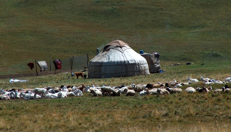 Yurt the nomad. Plateau Assy. Almaty of province.