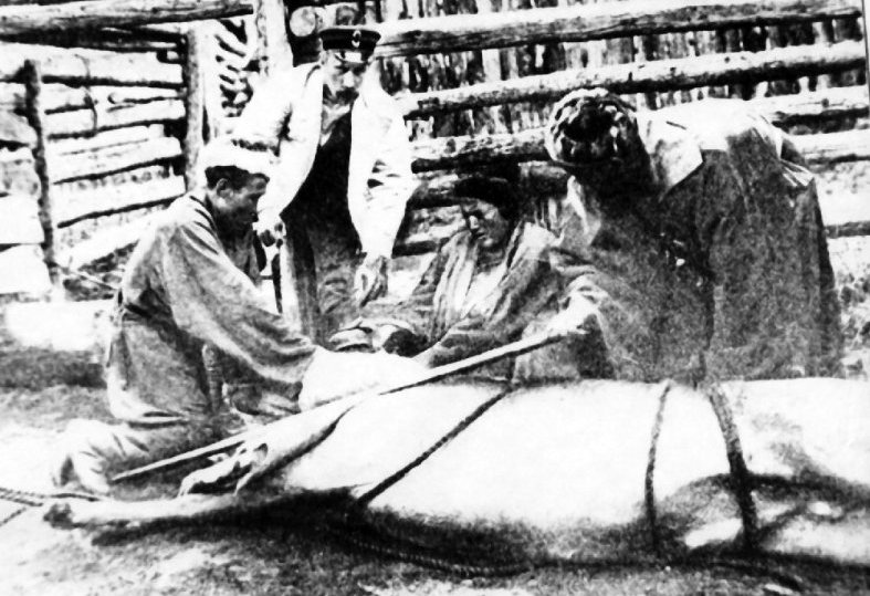 A.A. On an expedition to Altai, Silantyev experiences various types of saws for cutting antlers. 1897.