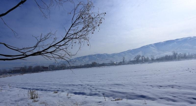 Окрестности поселка Узун-Агач. Заилийский Алатау. Алматинская область.
