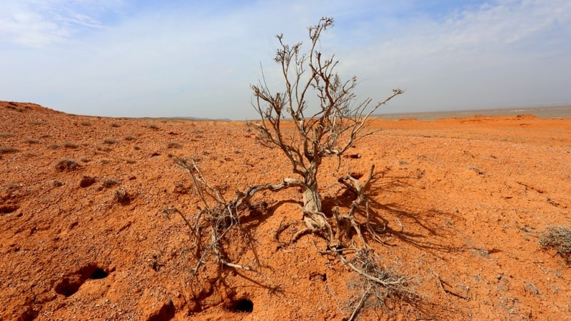 Nature of the deserts of Kazakhstan.