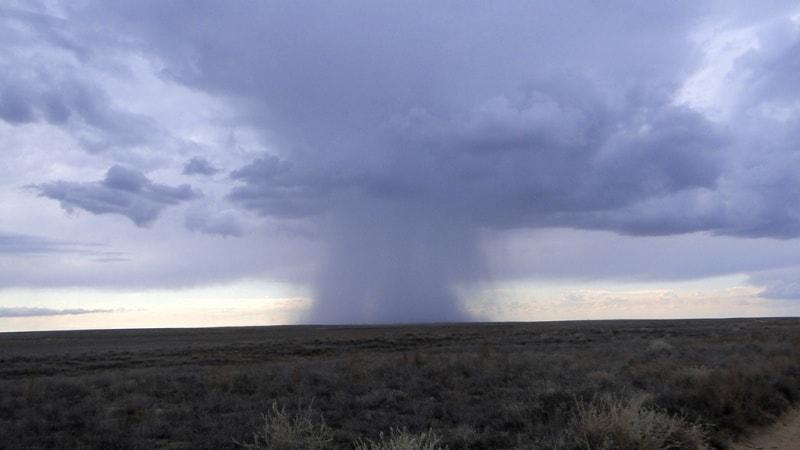 Rain in steppe.