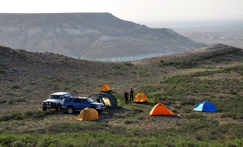 В полупустынях Центрального Казахстана.
