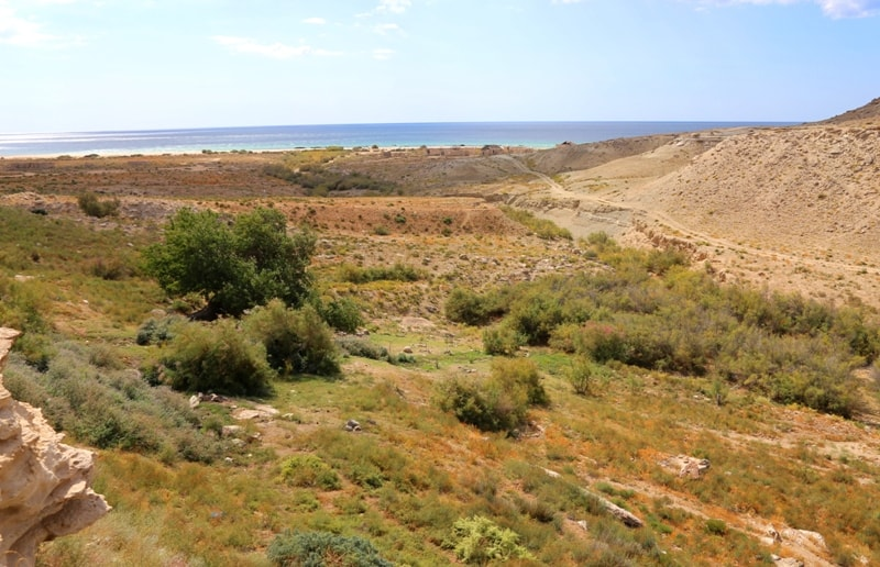 Saura gorge and environs.