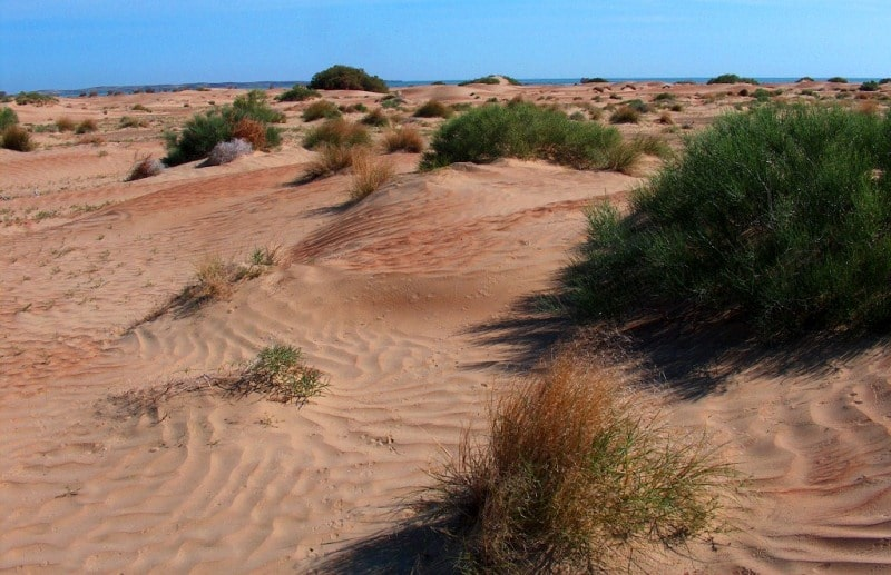 Sands Sentirkum and environs.