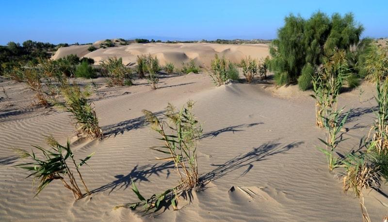 Sands Sholshagylkum and environs.