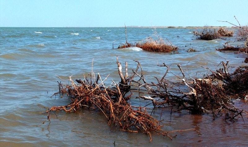 Lake Balkhasha and Algazy island.