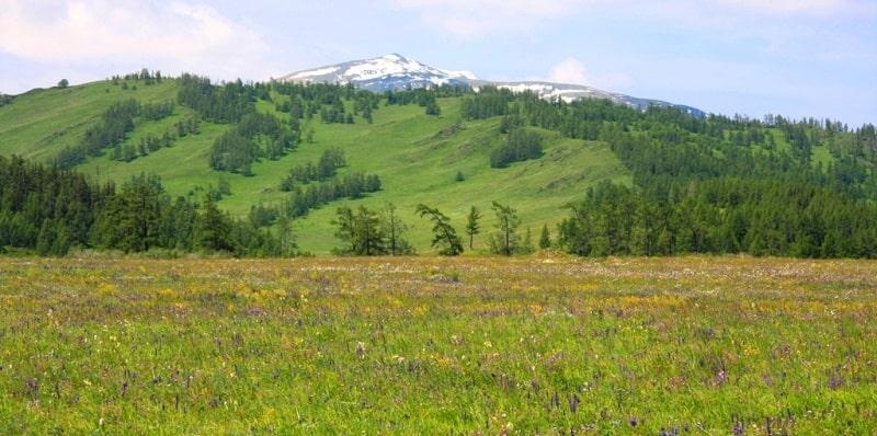 Mountains of the Narym ridge.