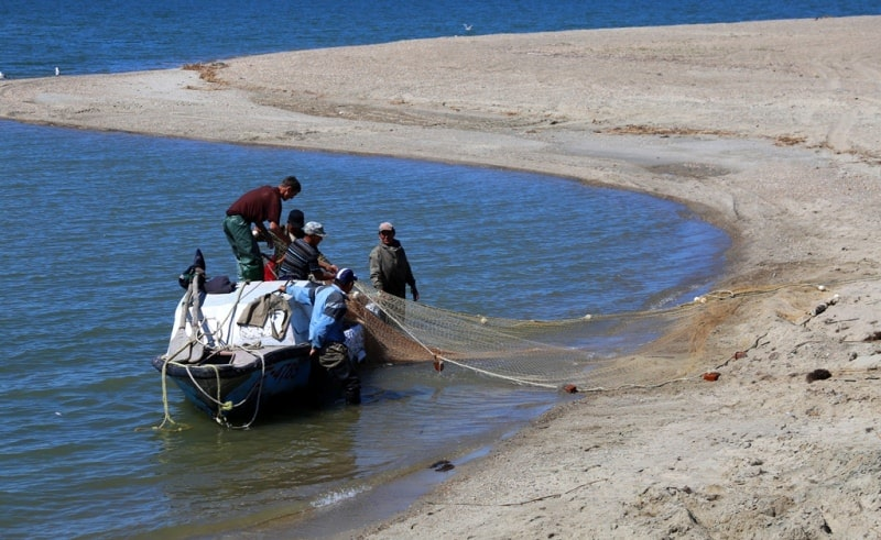 Озеро Зайсан и его окрестности.