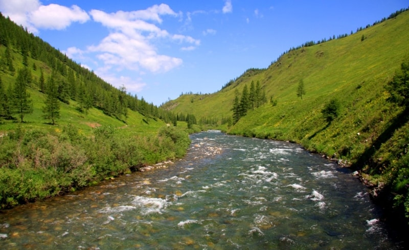 The nature of the Kazakhstan Altai in vicinities of the Austrian road.