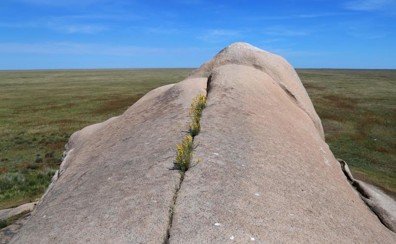 Гранитный утес Боритастаган находится в Кокпектинском районе Восточно-Казахстанской области.