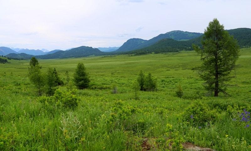 Southern Altai of Kazakhstan.