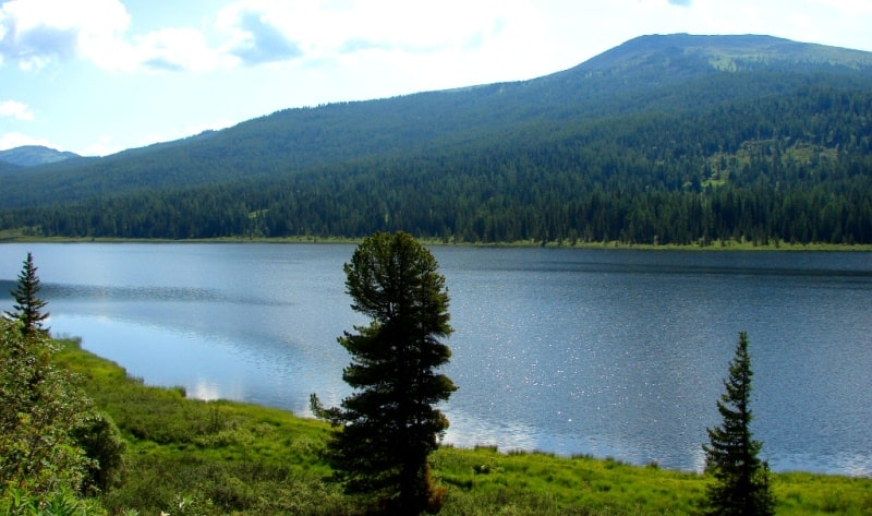 Natural environs of East Kazakhstan.