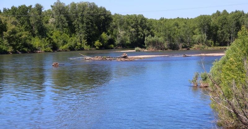 Kurchum river and environs.