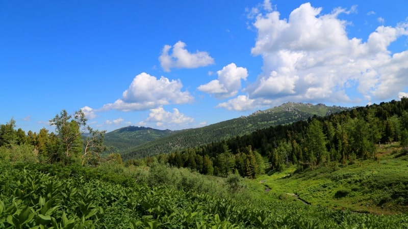 Nature sights of the Turgusun Valley.