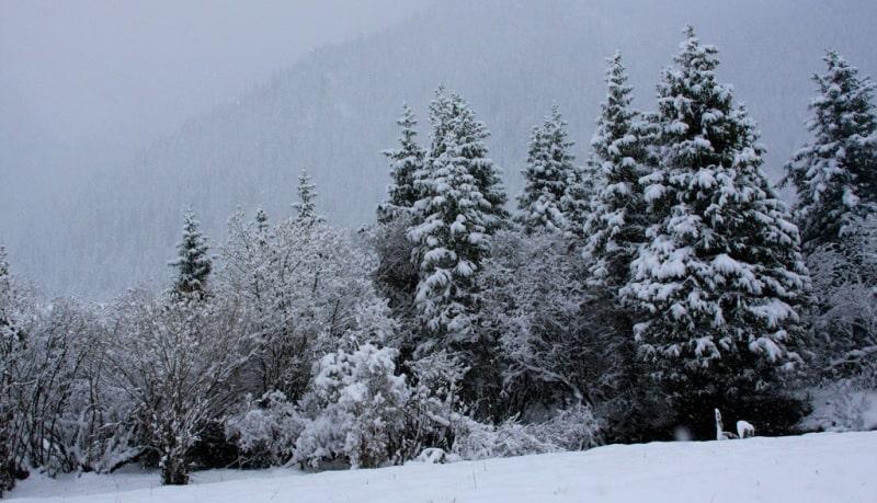 Akkol gorge in Bayankol.