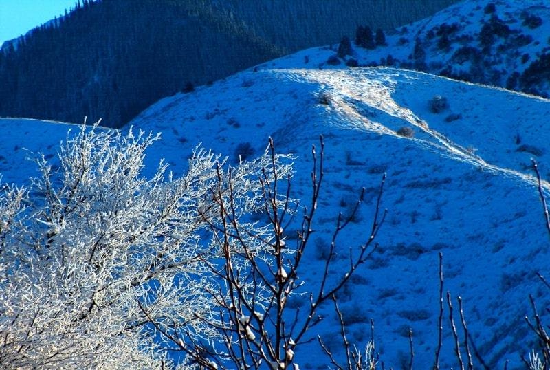 In mountains of Zailiysky Ala-Tau.