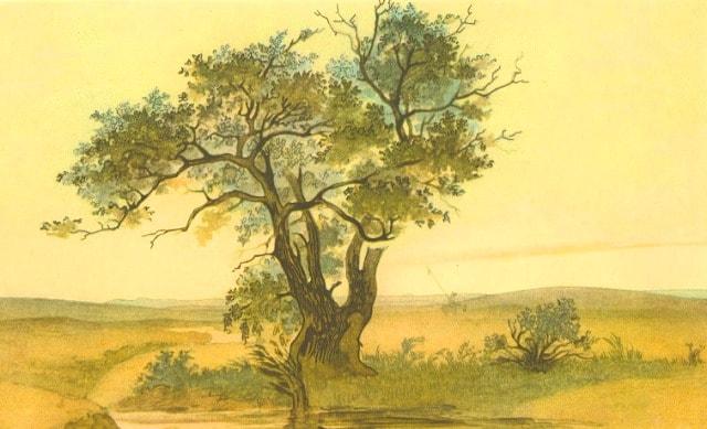 Джангиз агач. 1848 год.