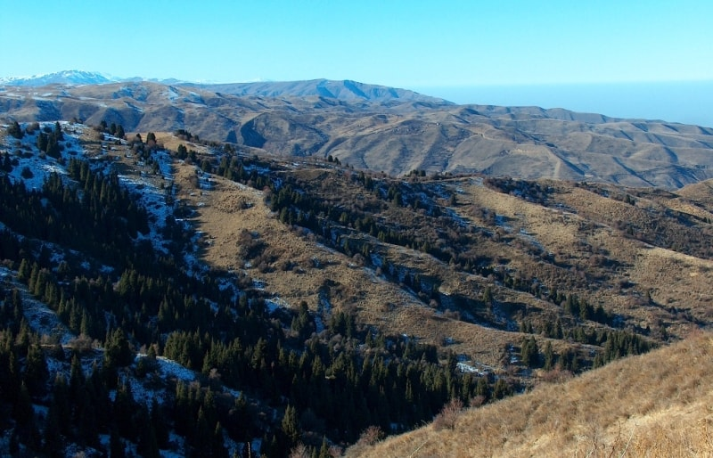 Вид на север с Аксайского скита.