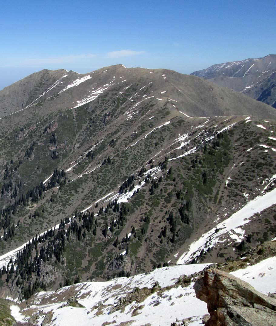 Вид на юго-запад с Бутаковского перевала.