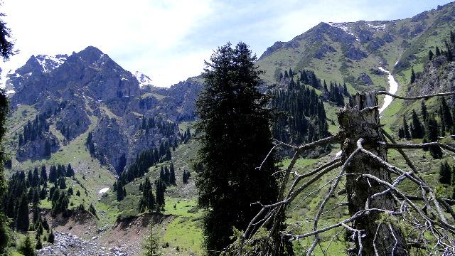 Западный склон урочища Ворота Туюксу.