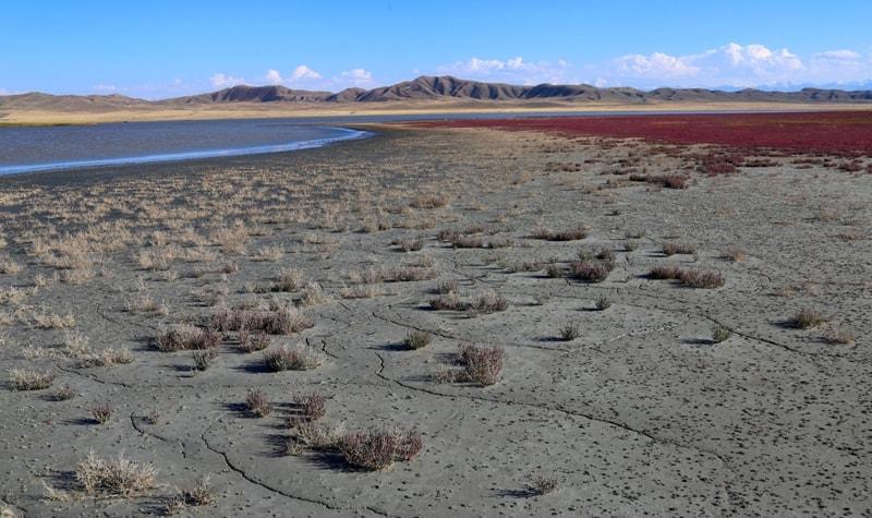 The lake Tuzkol in Kazkakhstan.