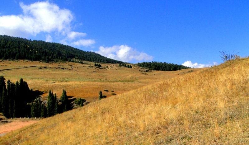Asy plateau.