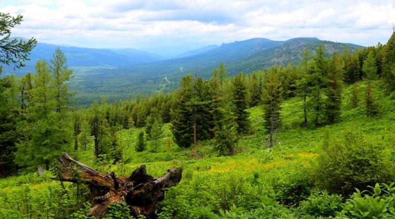 Вид на долину реки Белая Уба.