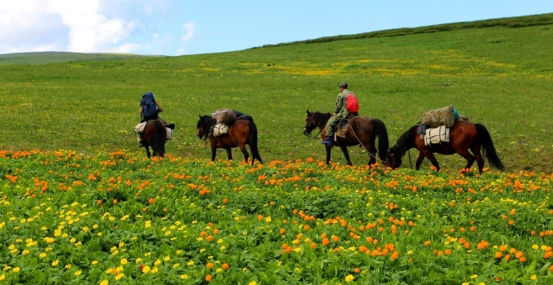 Horse riding in the West-Altai reserve.