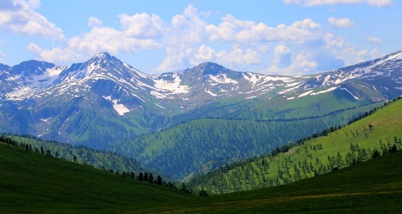 В Западно-Алтайском заповеднике.