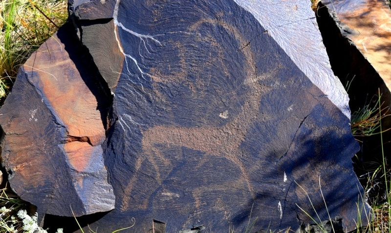 Petroglyphs the Bayan-Zhurek.
