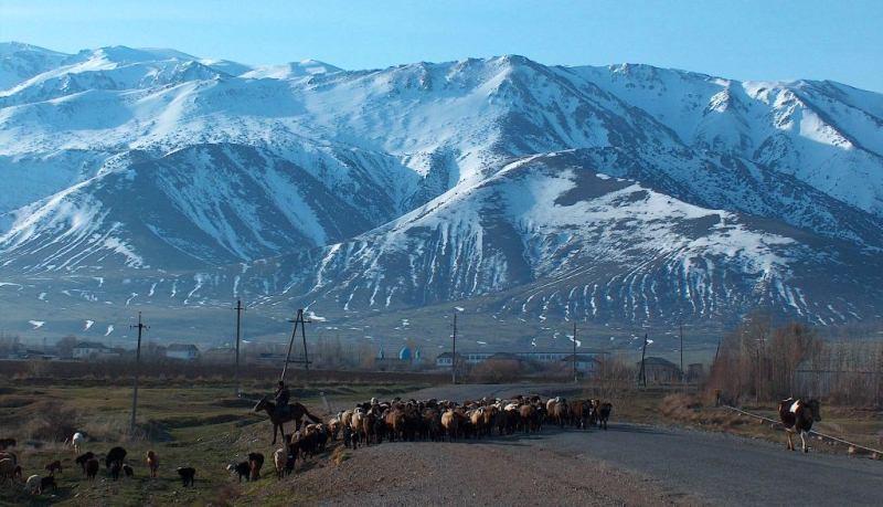 Jabagly village (Aksu-Djabagly preserve).