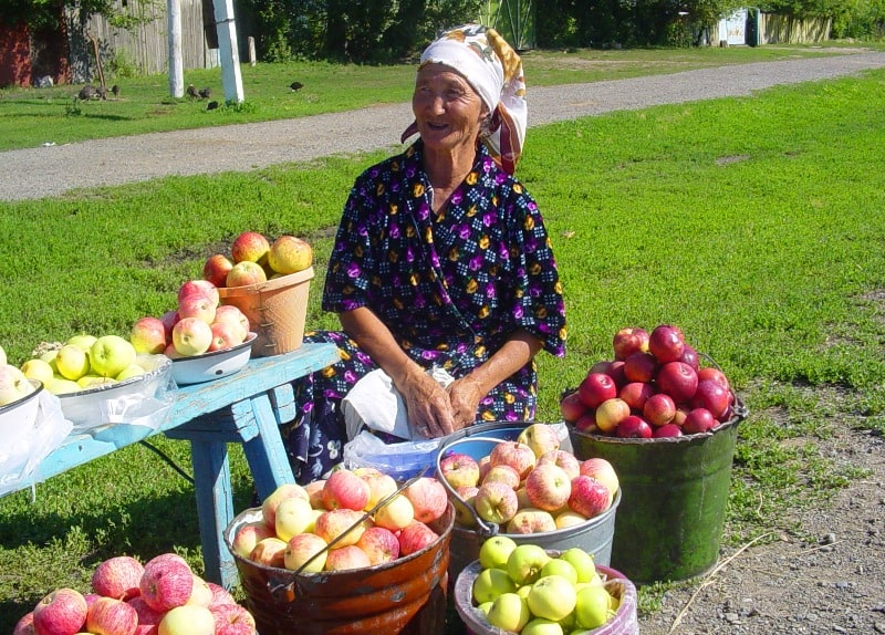Sellers of apples on road Almaty - Ust Kamenogorsk. Vicinities of settlement Kabanbay Batyr.