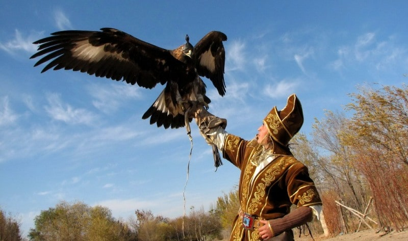 Demonstration hunting with golden eagle in Kazakhstan.