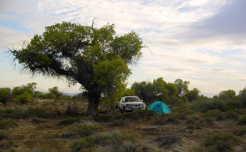 Горы Актау. Алтын-Емельский национальный парк.