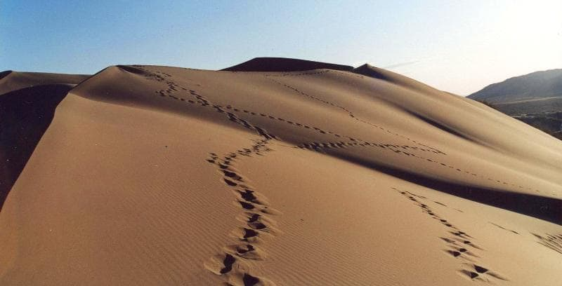 Singing dune. A three-copecks Altyn-Emel national park.
