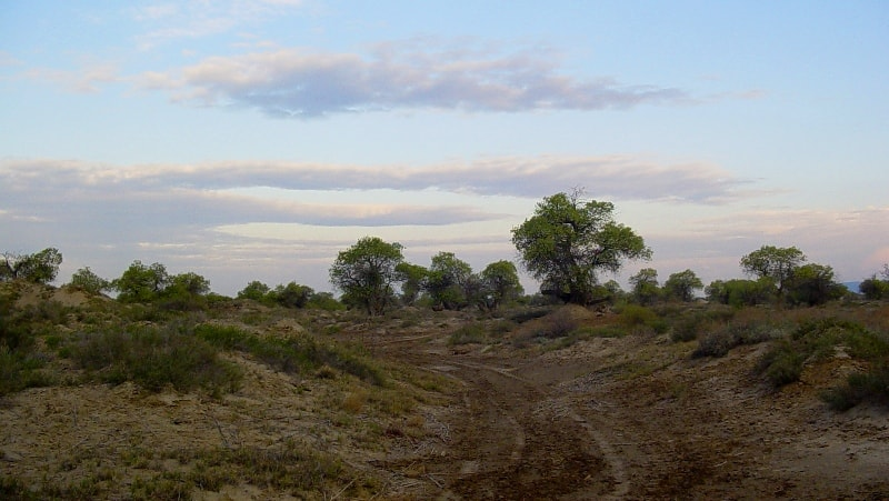 The Altyn-Emel national park.