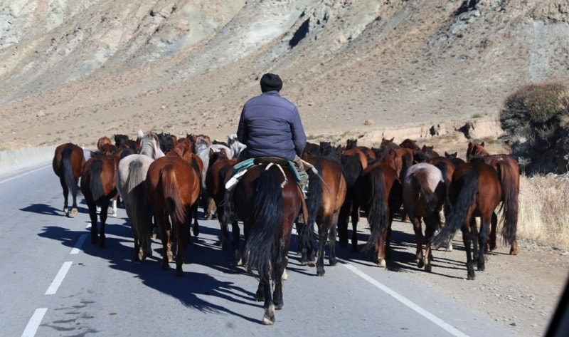 On roads of Kyrgyzstan.